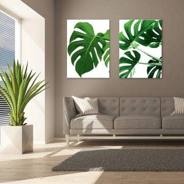 Espiria obraz na stenu Monstera v obývačke